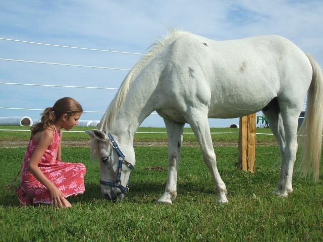 Mes chevaux!! Fin_ao16
