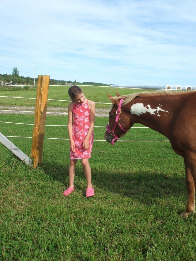 Mes chevaux!! Fin_ao20
