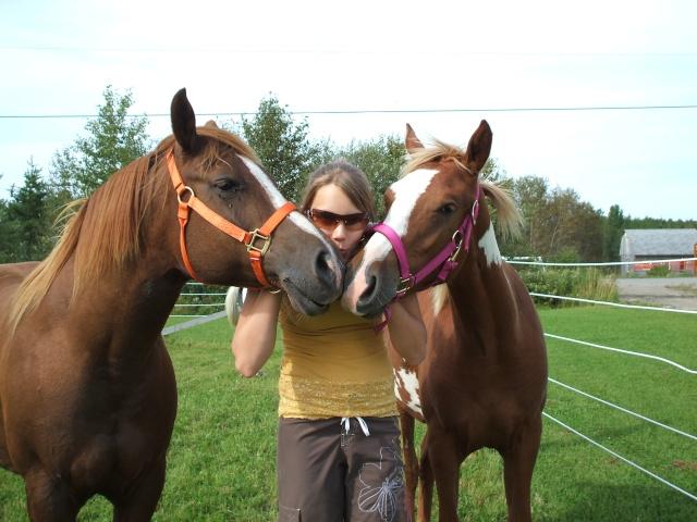 Mes chevaux!! Fin_ao23