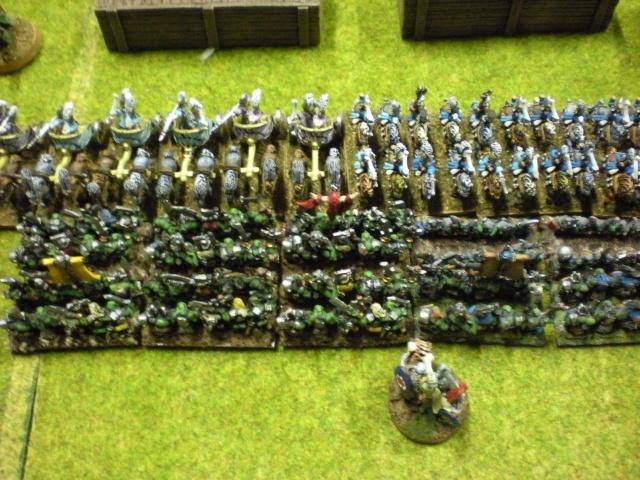 Royaume Ogre contre Elfes Dscn1515