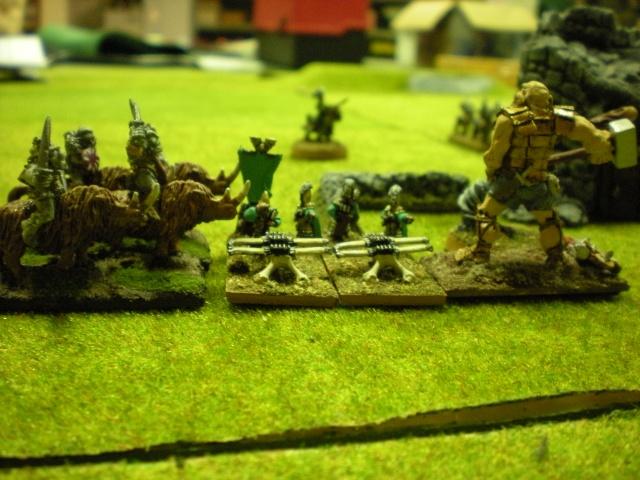 Royaume Ogre contre Elfes Dscn1517