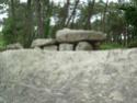 Mégalithes de Carnac Dscn1020