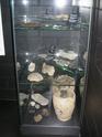 Museum für Urgeschichte(n) de Zug Dscn5027