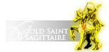 ■ Saint ■|Gold Cloth du Sagittaire|