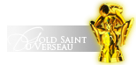 ■ Saint ■|Gold Cloth du Verseau|