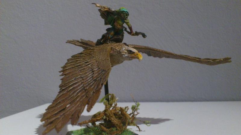 armée elfes sylvains Dsc_0017