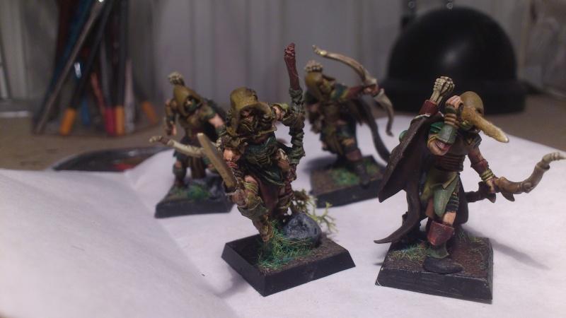 armée elfes sylvains Dsc_0111