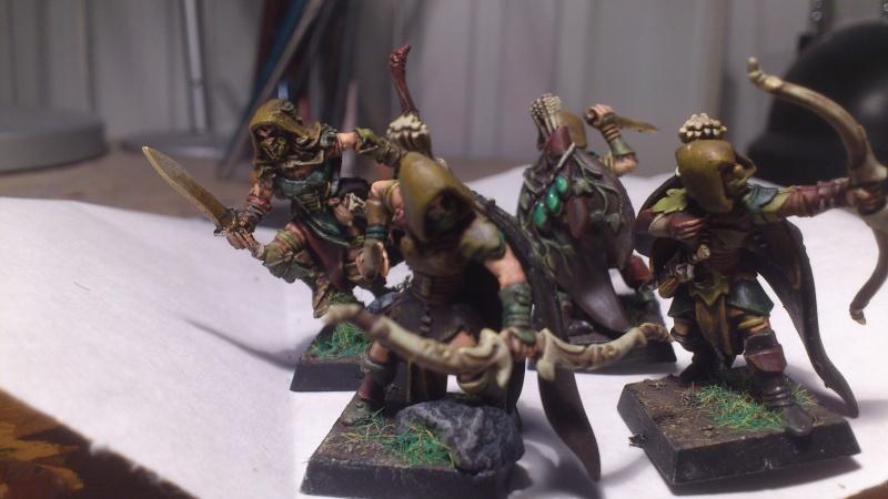 armée elfes sylvains Dsc_0112