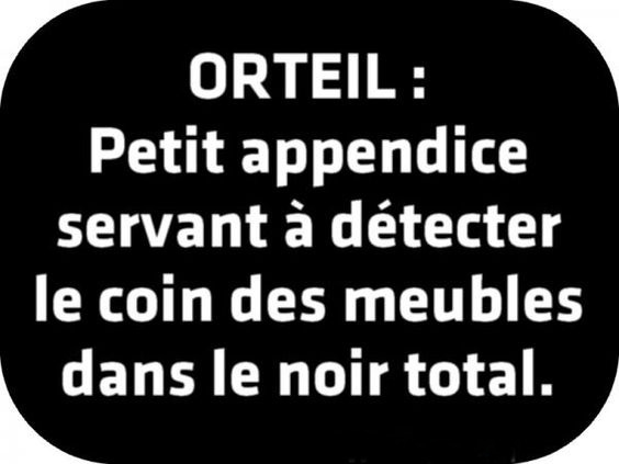 Le coin Humour  - Page 2 3ab012