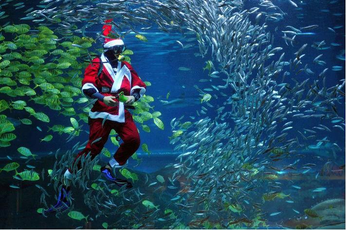 Noël c'est quoi pour vous?? Captu123