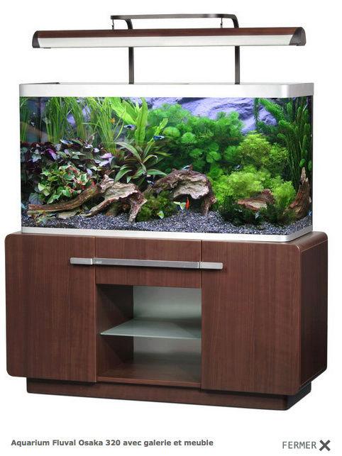 Projet d'un aquarium Amazonien Captur85