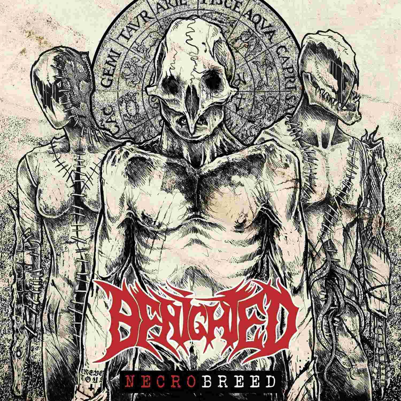 BENIGHTED Necrobreed (2017) Brutal Death Metal Benigh10