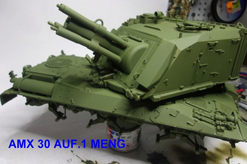 AMX 30/AUF 1. MENG - Page 2 114_1520