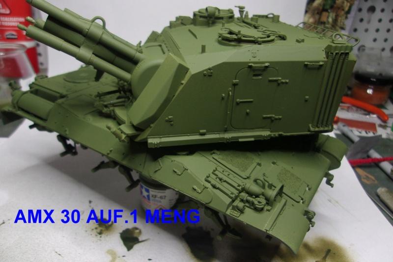 AMX 30/AUF 1. MENG - Page 2 114_1522