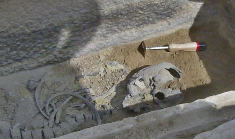 Τάφος του 4ου πΧ αιώνα στη Νέα Σμύρνη! Hpim4928