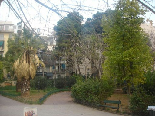 Στη χώρα των πλαστικών δέντρων Image_10