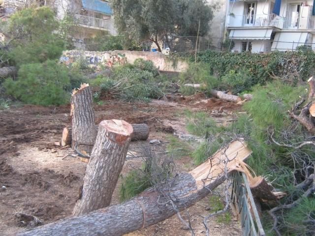 Στη χώρα των πλαστικών δέντρων Kommen11