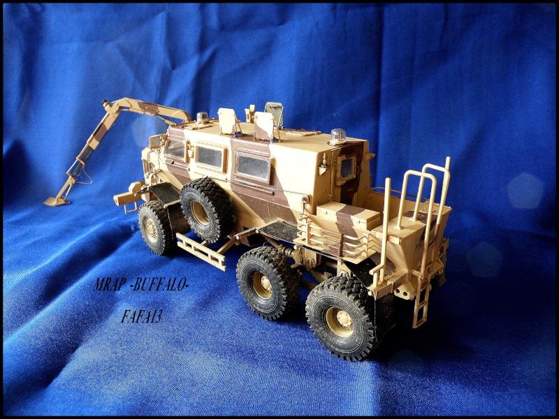 MRAP buffalo ADT - Page 2 P8240011