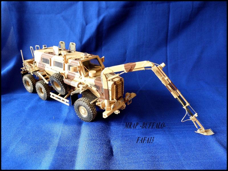 MRAP buffalo ADT - Page 2 P8240012