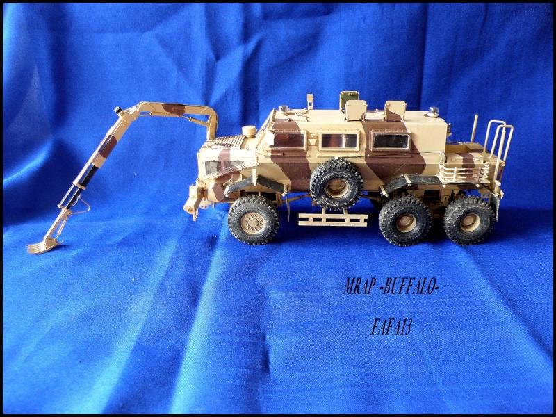 MRAP buffalo ADT - Page 2 P8240014