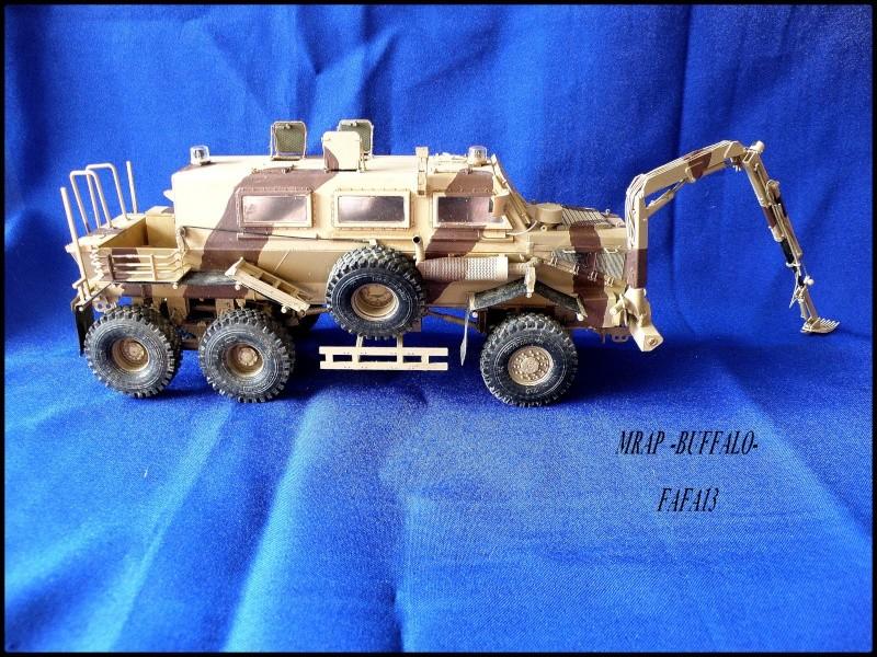 MRAP buffalo ADT - Page 2 P8240015