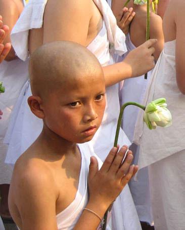 Zen, Satori et nirvana. Buddhi10