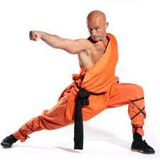 Kung Fu : Arts Martiaux Chinois Images11