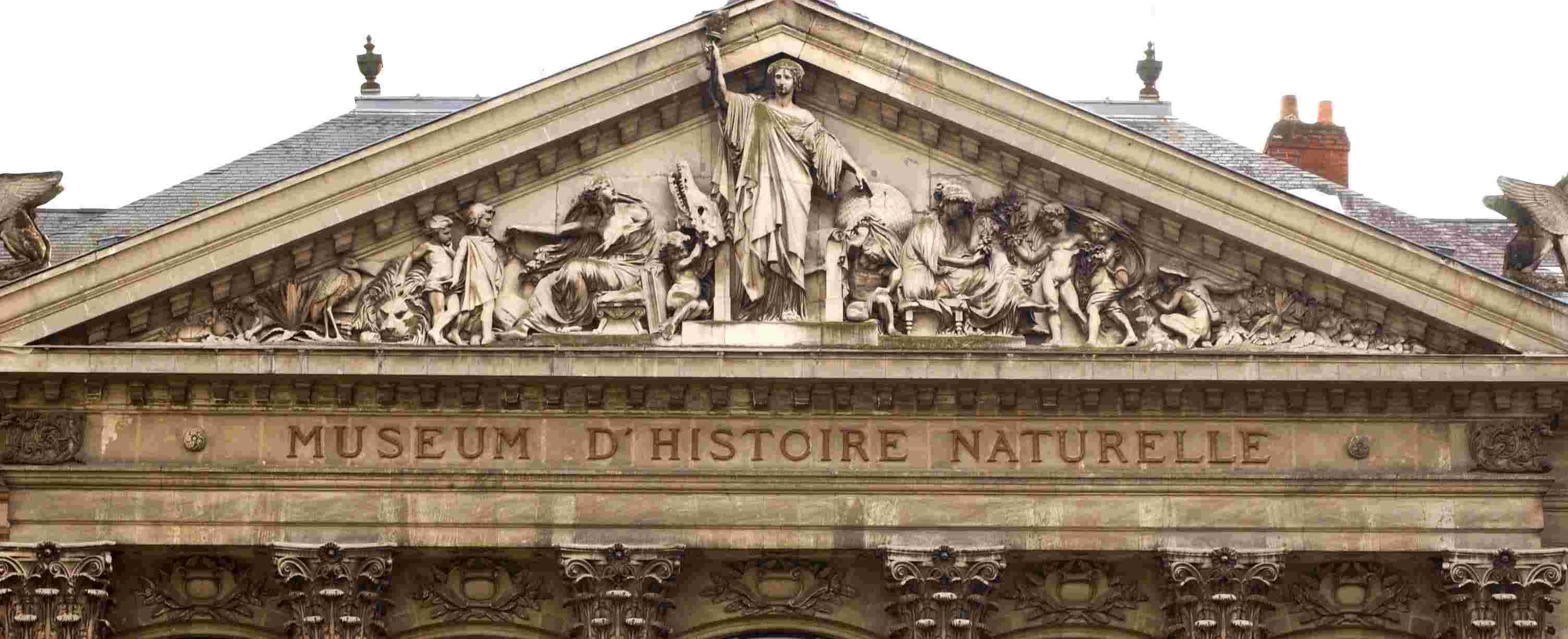 ARCHITECTURE : les frontons racontent une histoire 2008_010