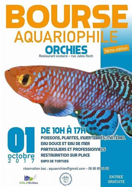 6eme bourse d'Orchies Affich10
