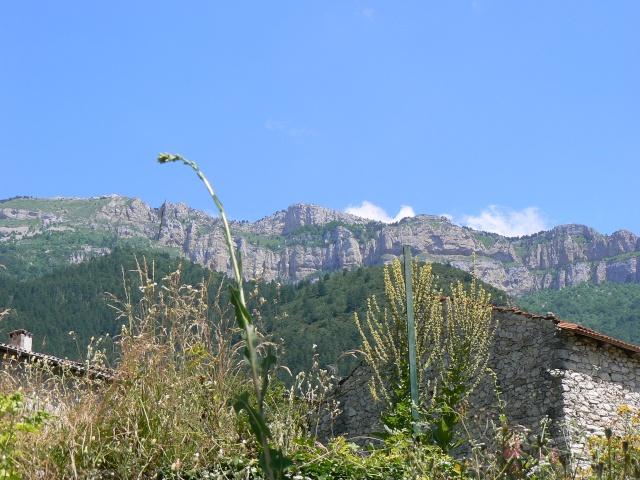 Quelques photos de la Drôme P1080613