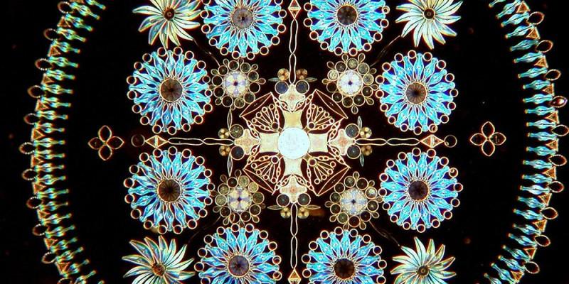 Small is beautiful Diatom14