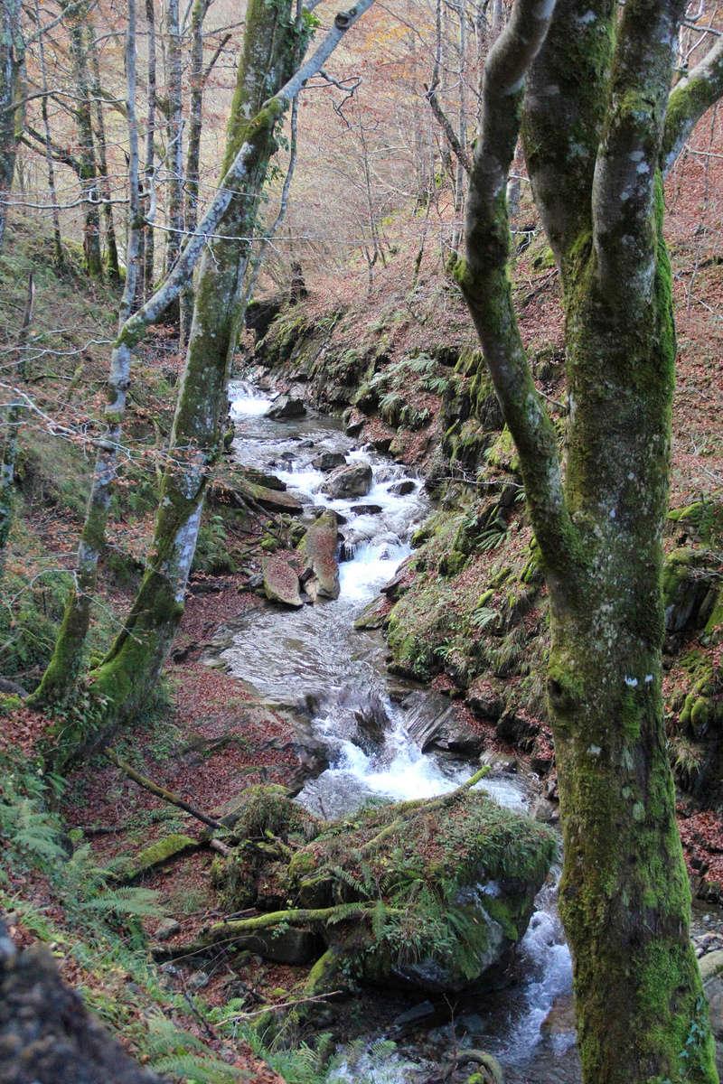 Histoires d'eau... Img_7129