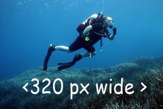 A few dive pics!!!!  750_3210