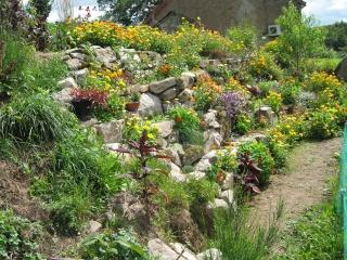 fleurs de marc et mario - Page 8 Img_0043