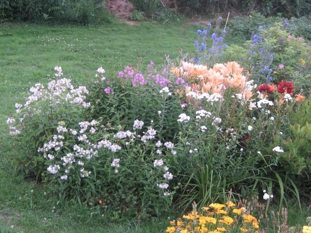mon extérieur fleuris de mon chez moi lol - Page 2 Img_0340