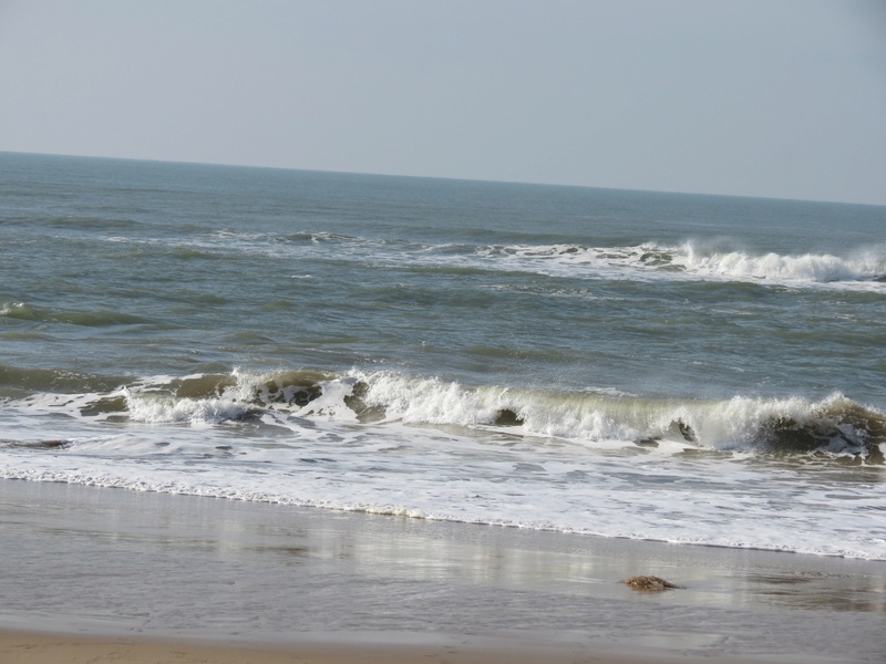 LA MER ses joies, ses caprices...ses humeurs... - Page 6 Img_6113