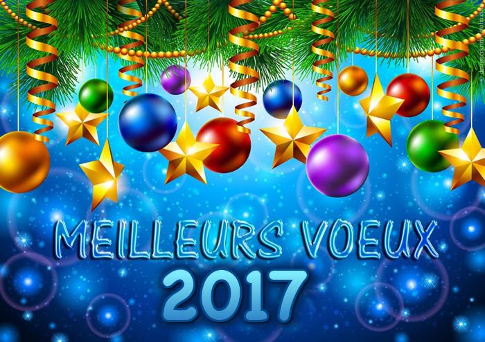 Meilleurs voeux 2017 ! Bonne-10