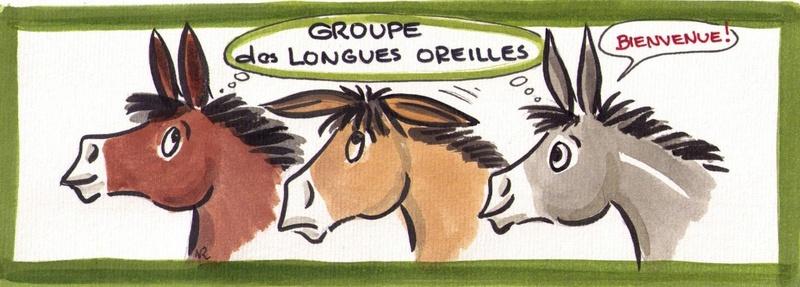 Un autre groupe Facebook sur les mules et mulets Bannie10