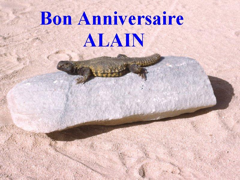 BON,  HEUREUX et JOYEUX  ANNIVERSAIRE ALAIN. - Page 2 Aalain10