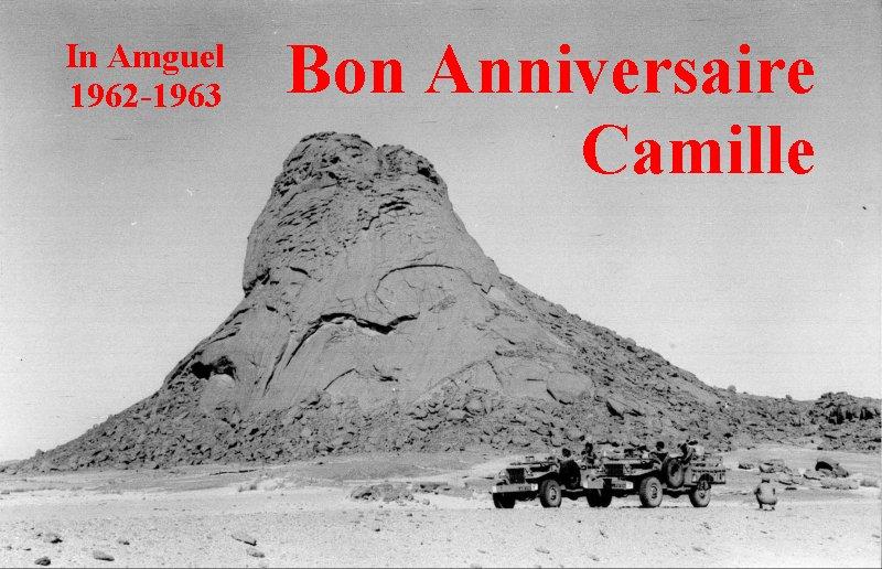 bon anniversaire Camille - Page 3 Ancami10