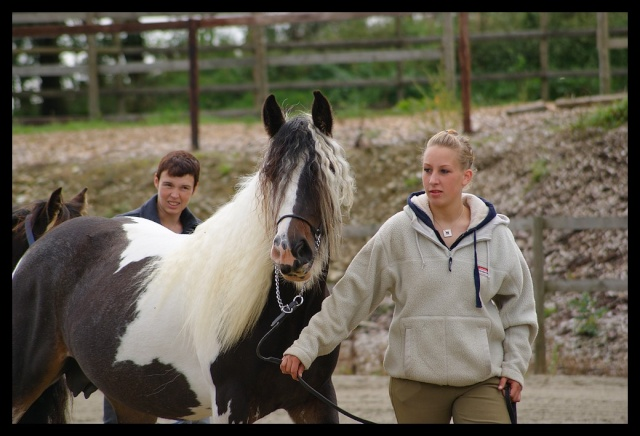 Gypsyranch - 19/01/2011 Concou58