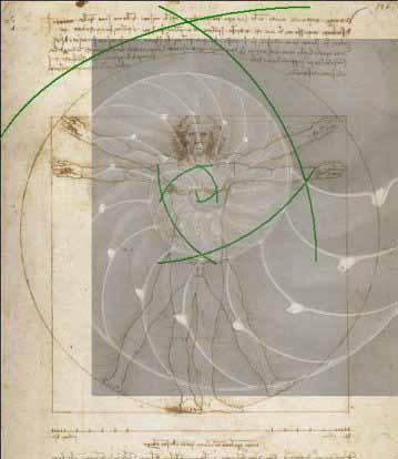La spirale, mouvement de vie. - Page 9 Spiral12