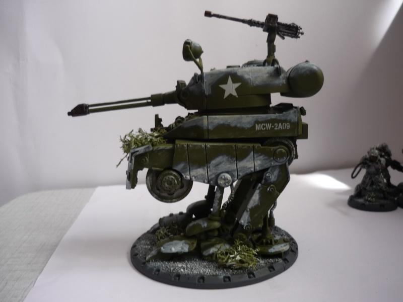 Américains Dust Tactics P1030413