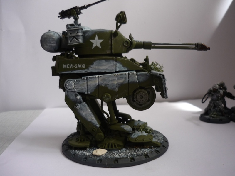 Américains Dust Tactics P1030414