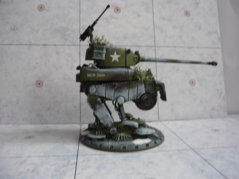 Américains Dust Tactics P1030511
