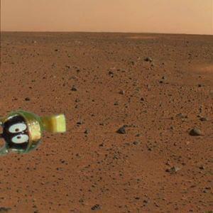 Mars lander 25524010