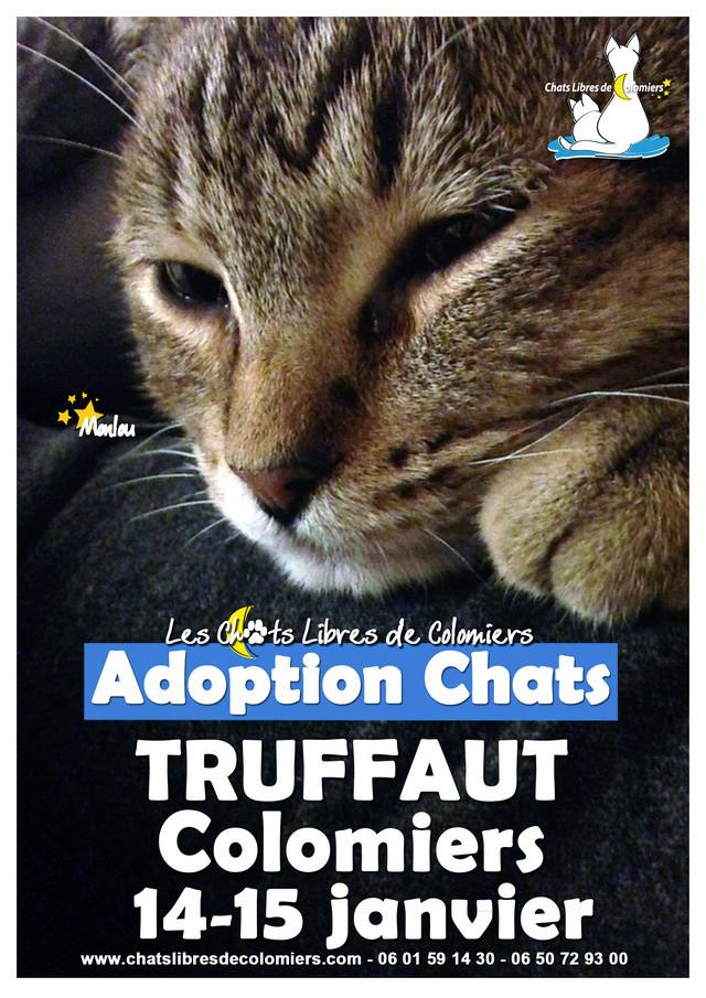 Week-end adoptions Truffaut Colomiers les 14 et 15 Janvier Affich11