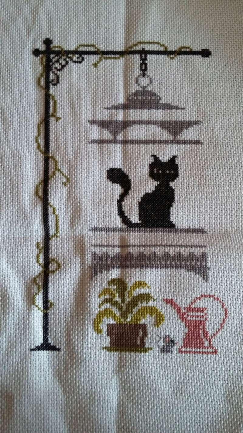 chat va pas chat de jardin privé - Page 18 20170126