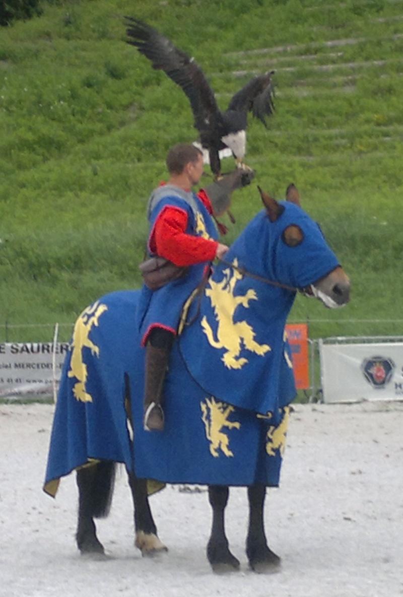 Concours Photos Septembre : Les Guerriers 09062010