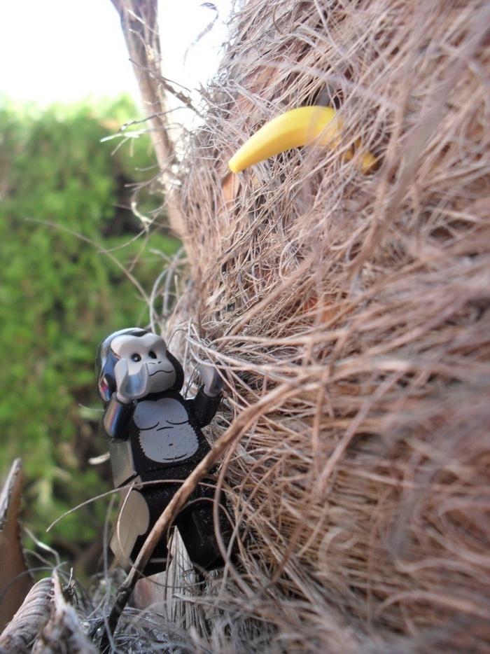 Les Photos du voyage de la Minifig édition 2012 ! P11a10